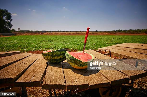 Italy, Apulia, Freshly harvested water melon on wooden cart