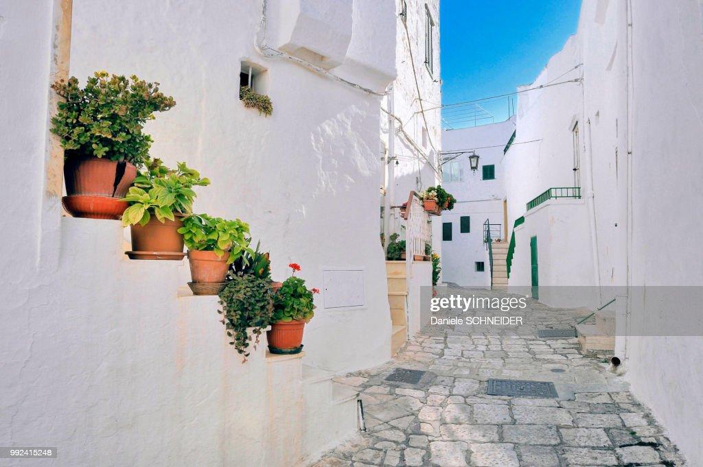 Italy, Apulia, Itria Valley, small street in the white village of Ostuni : Stock Photo