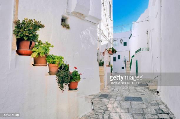 Italy, Apulia, Itria Valley, small street in the white village of Ostuni