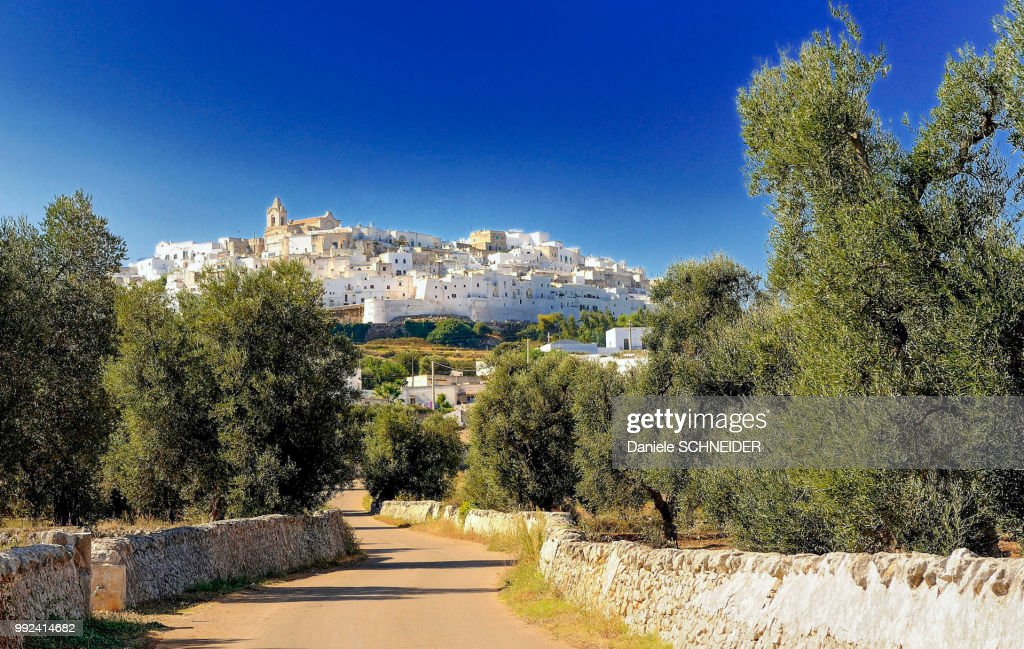 Italy, Apulia, Itria Valley, view of Ostuni from the olive groves : Stock Photo