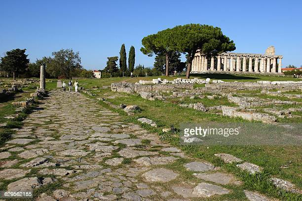 Italy Campania Paestum The Via Sacra and Athena Temple