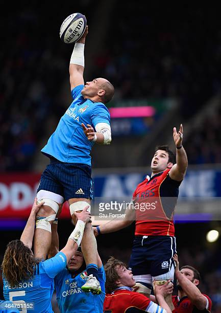 Italy captain Sergio Parisse wins a line out ball during the RBS Six Nations match between Scotland and Italy at Murrayfield Stadium on February 28...