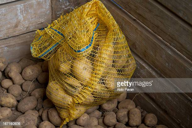 Italy, Cles, patatoes
