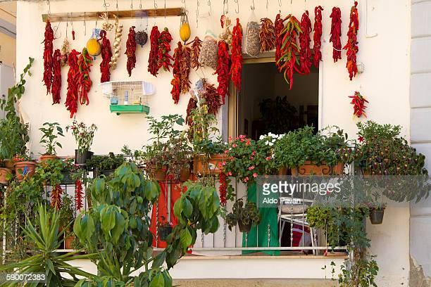 Italy, Diamante, chilies left to dry