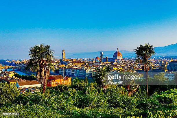 italy, florence, cityscape as seen from piazzale michelangelo - dôme photos et images de collection