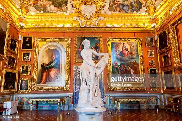 italy, florence, palazzo pitti - pitti foto e immagini stock