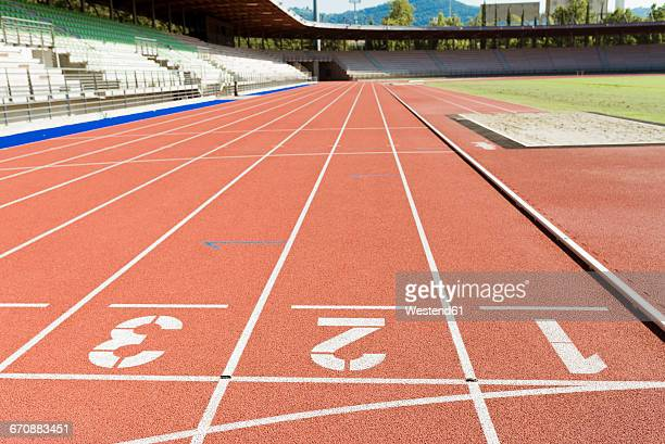 italy, florence, track and field stadium - track and field stadium stock pictures, royalty-free photos & images