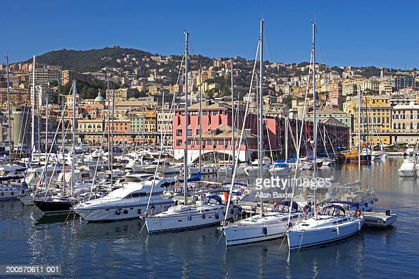 italy, genoa, yachts in harbour - genoa italy stock pictures, royalty-free photos & images