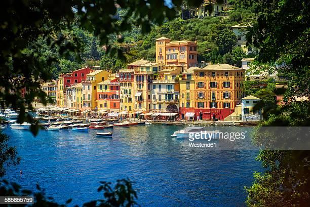 Italy, Liguria, Portofino, boats and row of houses