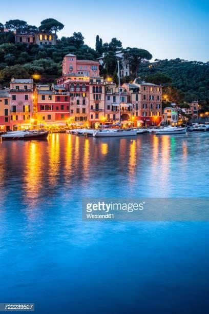 Italy, Liguria, Portofino, boats in harbour at blue hour