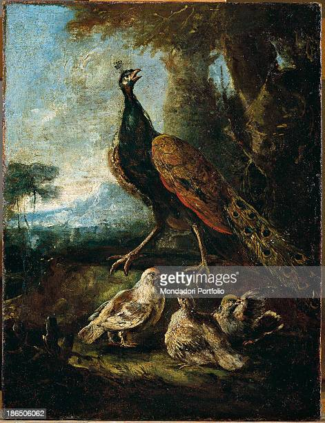 Italy Lombardy Milan Castello Sforzesco Civic Collections of Ancient Art Whole artwork view A peacock in a rural landscape with three chicks