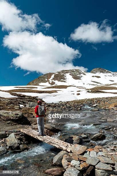 Italy Lombardy Stelvio National Park the Alps wooden bridge along the trail to the Alpe Lake