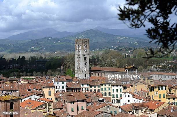 Italy Lucca Panorama of the old town with the Basilica of San Frediano 12th century from the Guinigi Tower