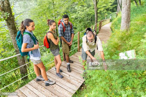 italy, massa, biologist explaining info about local flora in the alpi apuane - ツアーガイド ストックフォトと画像