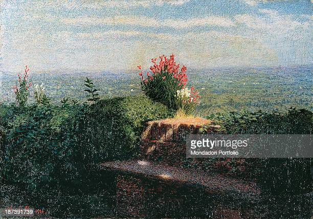 Italy Piedmont Novara Galleria d'Arte Moderna Giannoni All Vase of red flowers set against the deep blue sky between the green vegetation
