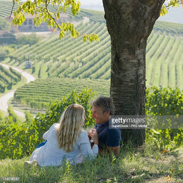 italy, piedmont, rear view of couple toasting wine glasses above vineyard - piedmont italy stock photos and pictures