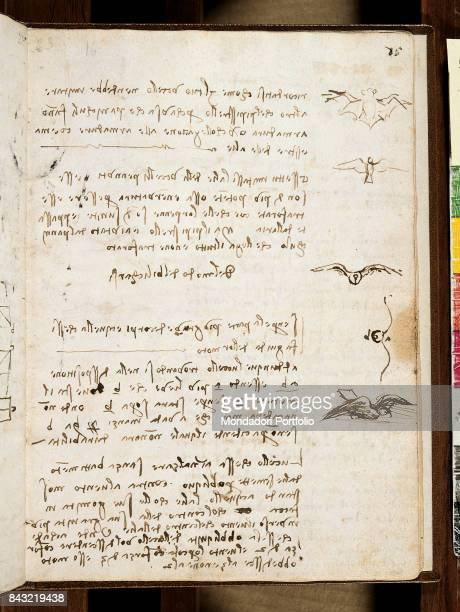 Italy Piedmont Turin Biblioteca Reale di Torino Detail A page from the Codex on the Flight of Birds