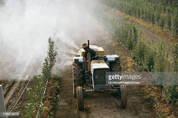 Italy Po Delta Vicinity Saluzzo Pesticide Being Sprayed Onto Fruit Trees Over Seven Tonnes Of Pesticides End Up In The Po Every Year Ground Water Is...