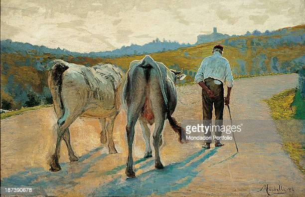 Italy private collection Painting showing two oxen and a peasant seen from behind walking on a country road Belonging to the divisionist period