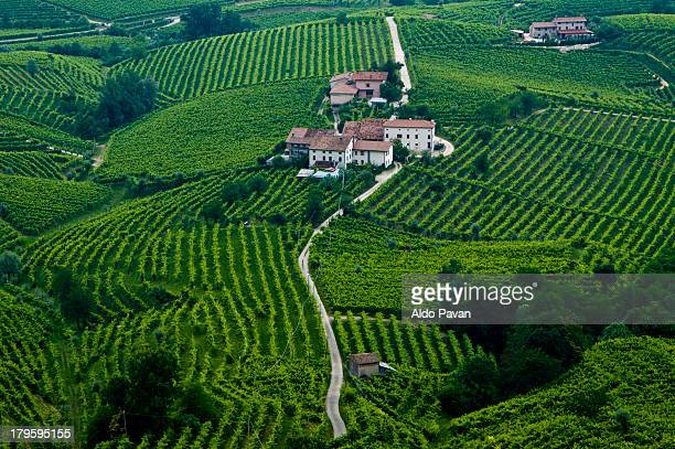 italy, santo stefano, follo - veneto stock pictures, royalty-free photos & images