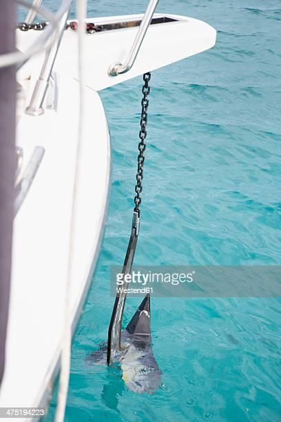 Italy, Sardinia, Anchoring yacht