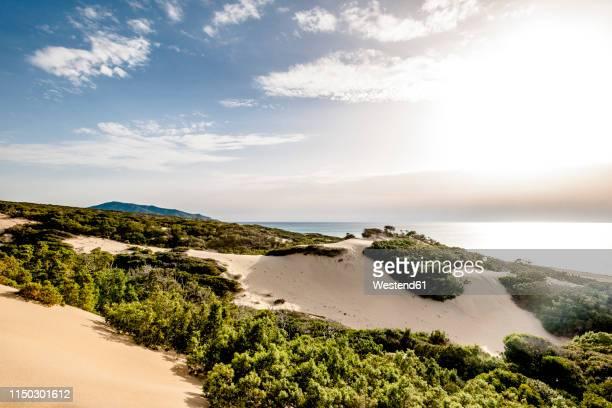 italy, sardinia, piscinas, beach - duna foto e immagini stock