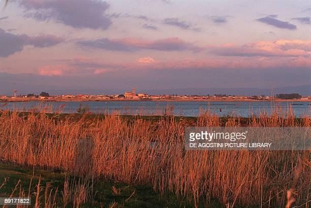 Italy Sardinia Region in the vicinity of Oristano Santa Giusta pond
