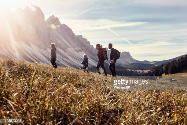 italy, south tyrol, geissler group, family hiking - wandern stock-fotos und bilder