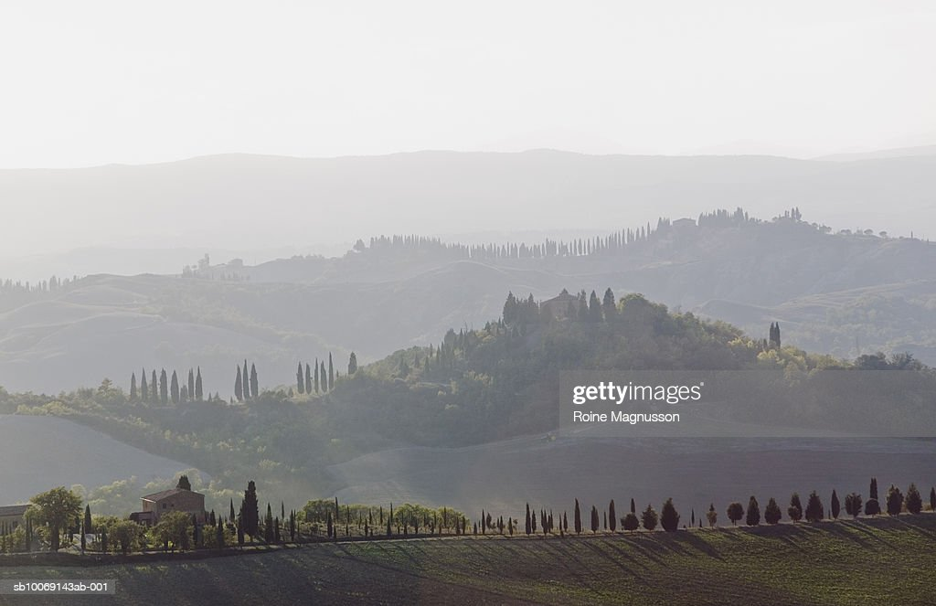 Italy, Toscana, San Quirico d'Orcia, agricultural landscape : Stockfoto