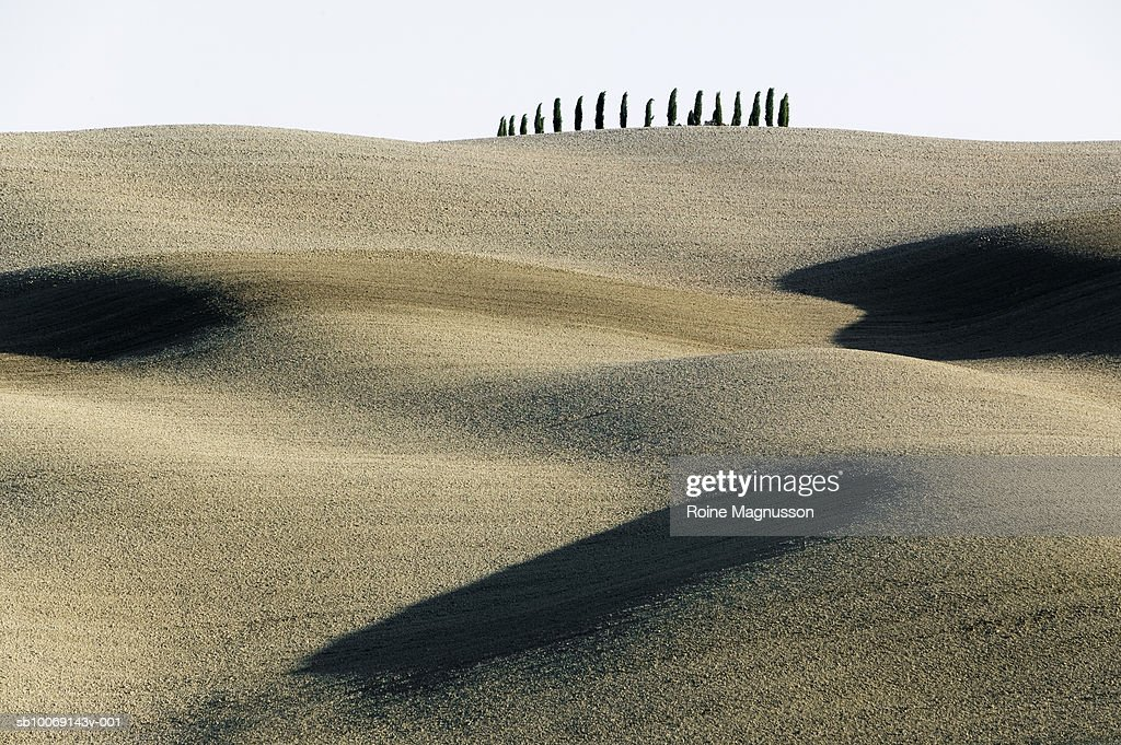 Italy, Toscana, San Quirico d'Orcia, rolling landscape : Stockfoto