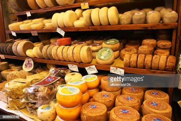Pecorino sheep's cheese