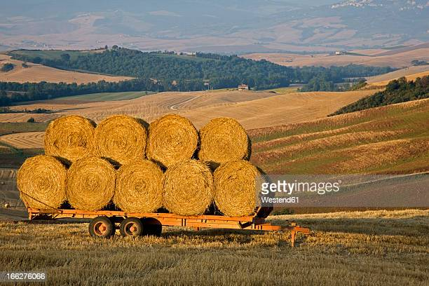 Italy, Tuscany, Bales of straw on trailer