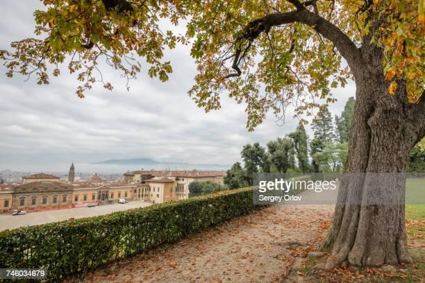 Italy, Tuscany, Florence, Cityscape seen from Boboli gardens
