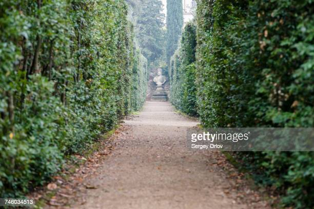 Italy, Tuscany, Florence, Footpath in Boboli gardens