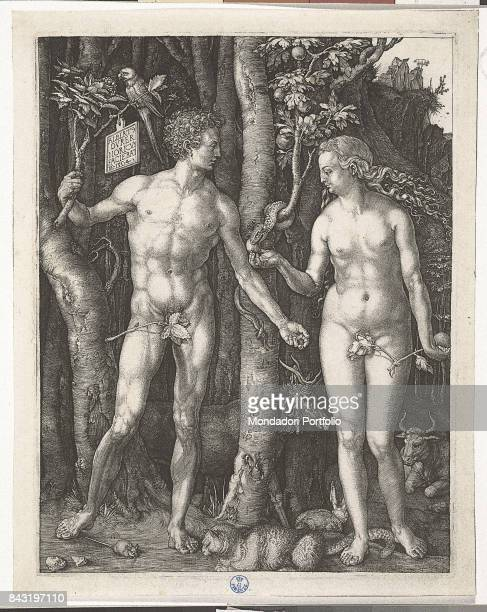 Italy Tuscany Florence Gabinetto Disegni e Stampe degli Uffizi Whole artwork view Adam holding a branch where a parrot is perched beside Eve holding...
