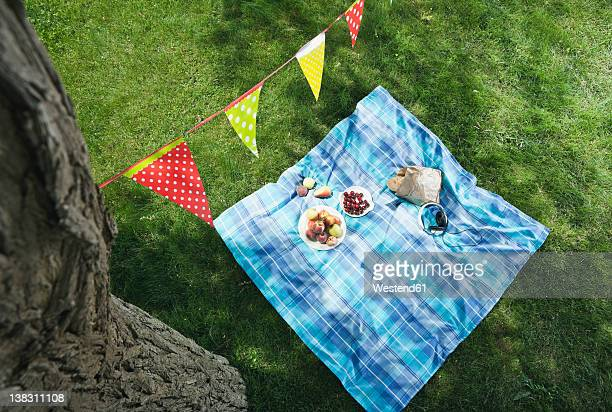 Italy, Tuscany, Picnic blanket with food and flag line above it