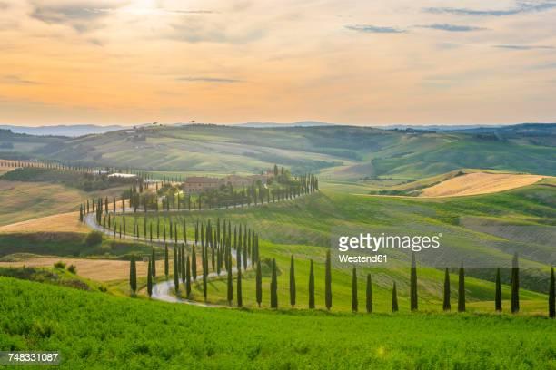 Italy, Tuscany, Val dOrcia, Baccoleno farmhouse