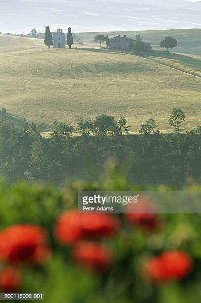 italy, tuscany, val d'orcia, church on hill near pienza - peter adams stock pictures, royalty-free photos & images