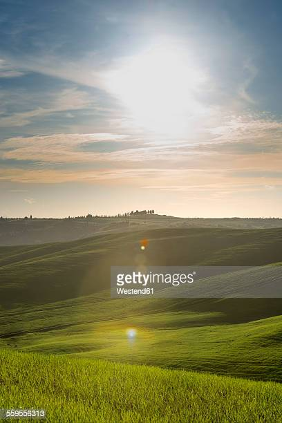 Italy, Tuscany, Val dOrcia, rolling landscape at backlight