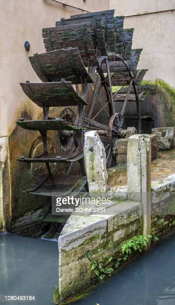 italy, veneto, treviso, paddle-wheel on a canal - treviso italy stock pictures, royalty-free photos & images