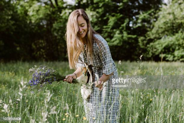 italy, veneto, young woman plucking flowers and herbs in field - erbe aromatiche foto e immagini stock