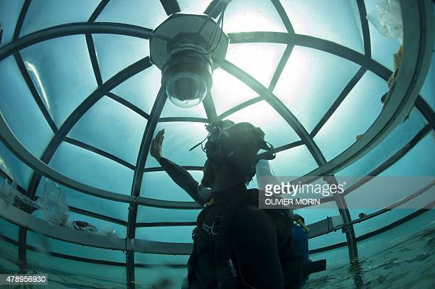 Italy's Project coordinator of Nemo's Garden Gianni Fontanesi checks inside immerged Biosphere on June 27 2015 in Noli 3 biospheres with air welcome...