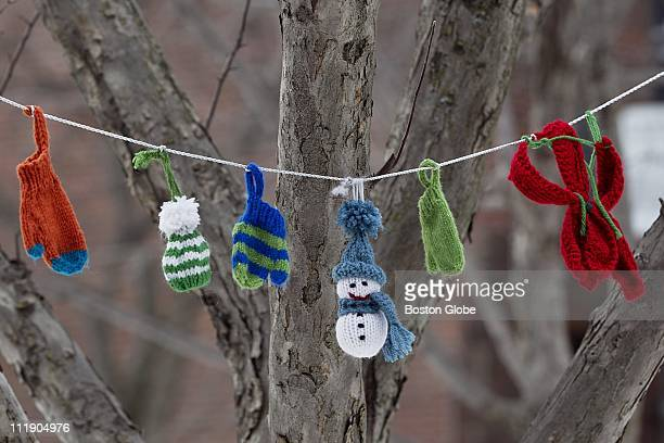 Items made out of yarn hang from a tree in the Southwest corridor in the Back Bay The items are part of yarn bombing which involves knitters adorning...