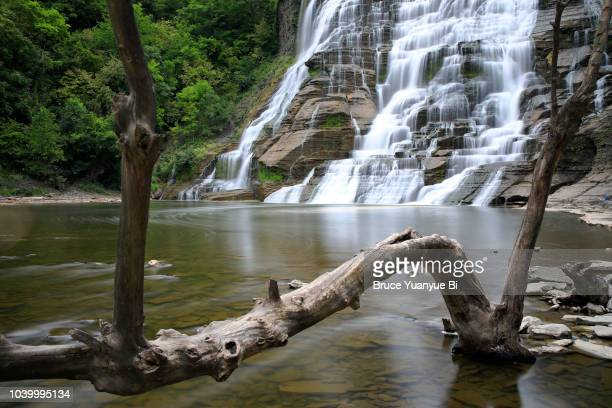 ithaca falls - finger lakes stock pictures, royalty-free photos & images