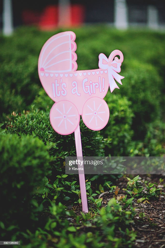 It's a girl pink sign in the bushes : Stock Photo