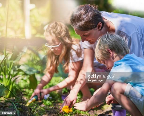 C'est une excellente occasion d'obtenir des enfants aux amoureux de la nature
