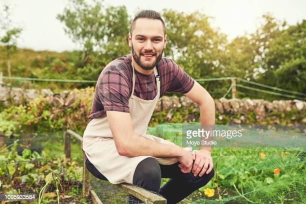 es todo cosecha propia con gran cuidado - actividad de agricultura fotografías e imágenes de stock