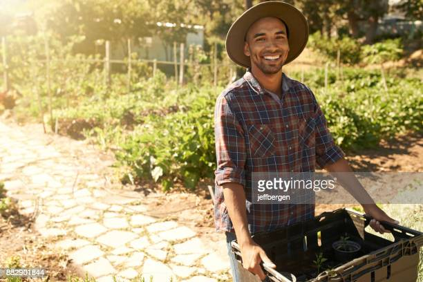 it's been a successful harvesting season - farm worker stock pictures, royalty-free photos & images