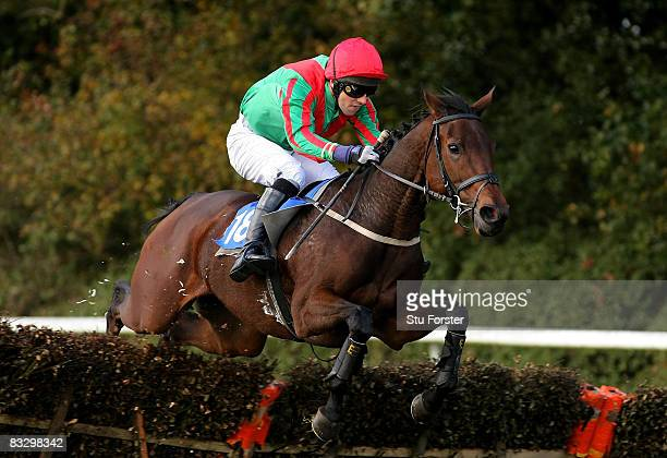 Its No Problem ridden by Lee Stephens clears a fence during the ludlowracecoursecouk Hurdle Race at Ludlow Racecourse on October 16 2008 in Ludlow...