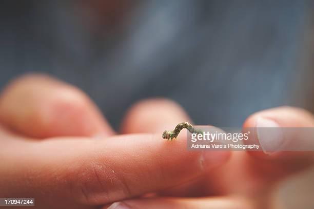 It's so tiny